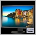 NEC MULTISYNC 24IN IPS LCD 1920X1200 99.9% SRGB W/ SPECTRAVIEWII