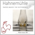 Hahnemühle PHOTO LUSTER 290GSM 17IN X 100FT ROLL - 3IN CORE