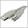 CABLE USB 2.0 AM - BM (PERIPHERAL) 6 FT