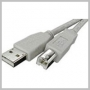 CABLE USB 2.0 AM - BM (PERIPHERAL) 10 FT